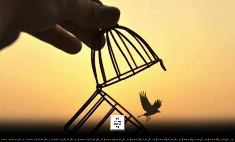 Yaşama Özgürlüğü